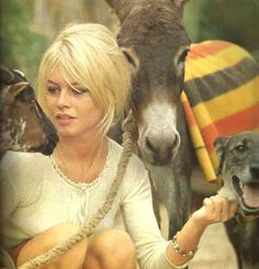 Devoted to Brigitte Bardot -- one of the most beautiful women ever, an everlasting icon style and the genuine French actress who revoluted the concept of. Bridgitte Bardot, Bardot Hair, Look Dark, Animal Activist, Winter Mode, French Actress, Mode Vintage, Animal Rights, My Beauty