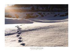 #zapada #soare #munte #fotografie  https://www.facebook.com/fotonuntabucuresti/