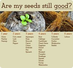 Seed Viability Chart from Sow True Seed