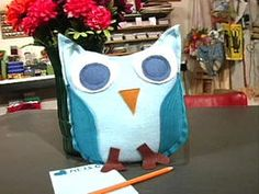 Stuffed Messenger Owl Card : Decorating : Home & Garden Television