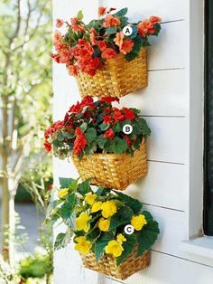 Cute idea. Shade. Look for Unused Space  Just because your garden beds are full doesn't mean you don't have room for more plants. This collection of baskets is a great way to add an extra dose of color to a garage.  A. Tuberous begonia (Begonia 'Nonstop Apricot') -- 2  B. Tuberous begonia (Begonia 'Nonstop Bright Red') -- 2  C. Tuberous begonia (Begonia 'Nonstop Yellow') -- 2