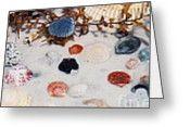 #381 14A Seashells under water Film.jpg Greeting Card by ROBIN LEE MCCARTHY PHOTOGRAPHY