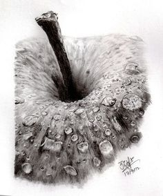 Realistic Drawings Pencil sketch of an apple by ~chaseroflight on deviantART - Art And Illustration, Realistic Drawings, Cool Drawings, Pencil Art, Pencil Drawings, Pencil Shading, Pencil Sketching, Fruits Drawing, Observational Drawing