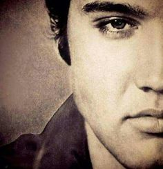 Elvis - Gorgeous Perfection....