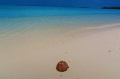 Top things to do in cook islands - cover