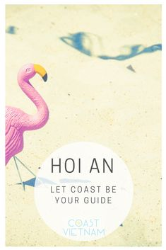 Plan your Hoi An holiday. Get independent help with travel itineraries and find answers to all your Hoi An travel queries. Vietnam Travel Guide, Travel Forums, Hoi An, Stuff To Do, Coast, Restaurant, Let It Be, Explore, This Or That Questions