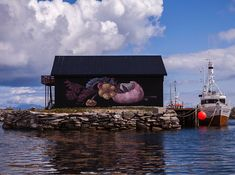 "PASTEL .. ""Dead nature of urchins catched by seagulls"" .. for UpNorth festival ..    [Røst, Norway 2017]"