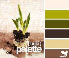 Exterior Paint Colors For House Green Olive Design Seeds Ideas For 2019 Exterior Paint Colors For House, Paint Colors For Home, House Colors, Colour Pallete, Colour Schemes, Color Palettes, Home Coffee Tables, Coffee Colour, Design Seeds