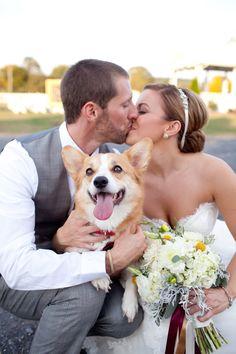 pet portrait :) | Katie Nesbitt #wedding