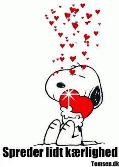 Spreder kærlighed
