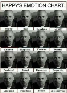 Ohh this is too funny! Happy's Emotion Chart