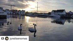 Ser frem til roligere dager i juleferien. #reiseblogger #reiseliv #reisetips #reiseråd  #Repost @junelisenornes (@get_repost)  s o l s n u d a g e n >>>>>>>>>>>>>>>>>>>>>>>>>>>>> Even the darkest night will end and the sun will rise <<<<<<<<<<<<<<