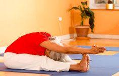 Resultado de imagen de sivananda yoga asanas fotos