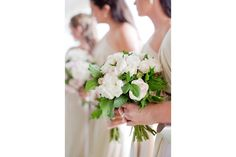Bridesmaid posies - David Austin Roses - The Lone Hydrangea