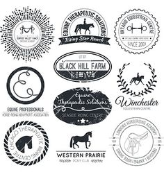 Horse logo vector by Favete on VectorStock®