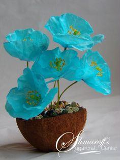 Wafer Paper Blue Himalayan Poppy - Cake by Petya Shmarova