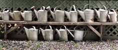 A szárazság okozza a legnagyobb problémát a kerttulajdonosok szerint, a megkérdezettek 45 százaléka jelölte meg komoly problémaként. Nem csoda, ha figyelembe vesszük, hogy 1901 óta az éves csapadékmennyiség országos átlaga 7 százalékkal csökkent…