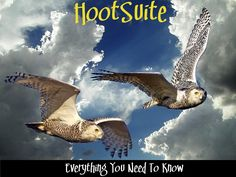 HootSuite is a tool for social media management that we've talked about and referenced many times. I am a certified HootSuite Solution Pro, which means that I have been trained on not only how to use HootSuite, but how to help business owners understand how they can use HootSuite to manage and monitor their social media accounts. This is the first in a new series I'm offering on How to Make the Most of Your HootSuite Account.