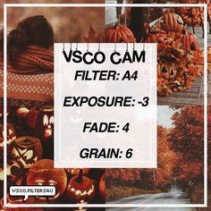 (Julia)| Halloween Filter ☁️| Looks best with fall/ Halloween pictures (looks good with pumpkins) ‼️| Click the link in my bio to get free vsco filters ❤️| Get this to 70 likes for another filter | Dm us with any suggestions  Comment a  if you like this filter