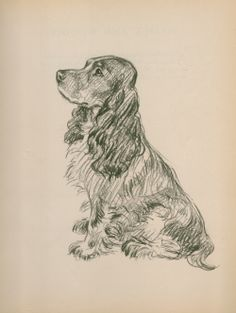 """""""Caesar"""" by Lucy Dawson from the Dogs as I See Them series.  Love that puppy face."""
