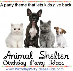Animal Shelter Birthday Party Theme A party theme that lets kids give back!   Help your local animal shelter with this fun birthday party theme.  Includes a FREE scavenger hunt list of items to find for an Animal Shelter.   Doubles as a great party game so kids have fun while they are helping!   Great ideas!  http://www.birthdaypartyideas4kids.com/animal-shelter-party.htm