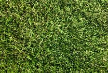 For some reason, my grass has slowly been dying over the past couple years. It never comes back healthy or as green as the year before. Perhaps I should look into getting something like this. I'll have to look more into where I can find something similar!