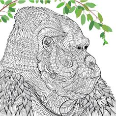 The Mesmerising Detail And Beautiful Patterns In Richards Spectacular Designs Are Perfect For Colouring Lovers Animal Coloring