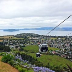 Looking Out Over Rotorua, North Island, New Zealand