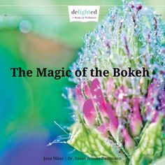 eBook The Magic of the Bokeh  Learn How to by DelightedFotoschule, €5.00