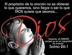 Pooky Inspiration: Salmos 26