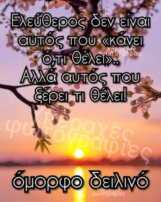 Good Afternoon, Good Morning, Greek Quotes, Good Night, Positive Quotes, Positivity, Movie Posters, Buen Dia, Nighty Night
