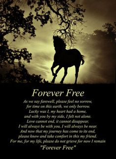 Sepia Forever Free Spiritual Poem With Horse Art Print by Stephanie Laird. All prints are professionally printed, packaged, and shipped within 3 - 4 business days. Choose from multiple sizes and hundreds of frame and mat options. Horse Poems, Horse Riding Quotes, Horse Love Quotes, Horse Sayings, Cowboy Quotes, Equine Quotes, Equestrian Quotes, Equestrian Problems, Spiritual Poems