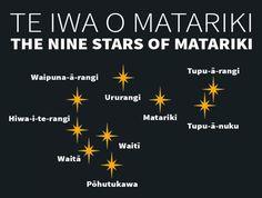 The Matariki star cluster — Science Learning Hub Auckland, Maori Words, Maori Symbols, Marine Plants, Ministry Of Education, Star Constellations, Kiwiana, Star Cluster, The Nines