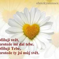 I Love You, Mindfulness, Appliques, Facebook, Riveting, Te Amo, Je T'aime, Love You, Consciousness
