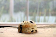maple blueberry scones