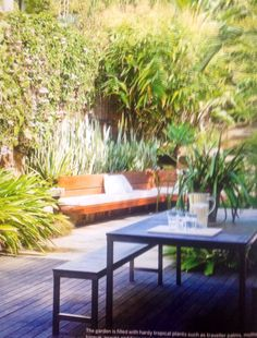Small outdoor garden