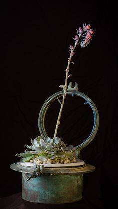 Vintage - Succulents with Antique Container - Bloom Couture