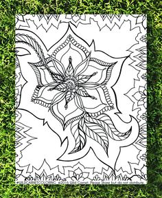 Floral Coloring Ornate Hand Illustrated Page Botanical Stoner Download Adult