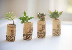 Mini succulent garden   10 DIY Wine Cork Projects