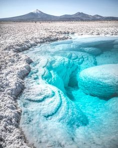 Pool of crystal clear water Salar de Atacama salt flats, Chile - Cornelis Verton - Nature travel Beautiful Places To Visit, Cool Places To Visit, Places To Travel, Travel Destinations, Travel Tours, Dream Vacations, Vacation Spots, Destination Voyage, Crystal Clear Water