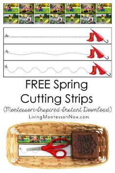 Living Montessori Now - Montessori Inspiration for Parents and Teachers Cutting Activities, Fine Motor Activities For Kids, Toddler Learning Activities, Montessori Activities, Spring Activities, Montessori Homeschool, Toddler Preschool, Montessori Quotes, Dementia Activities