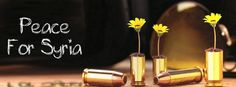 peace for syria // flowers in bullets