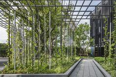 The Base Phetkasem Landscape Design by Arsomsilp | Wison Tungthunya & W Workspace