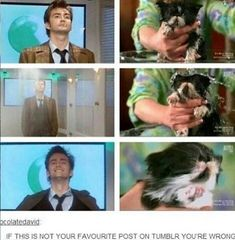 10 and Puppy: I see no difference Bbc Doctor Who, Twelfth Doctor, Eleventh Doctor, Bbc Tv Shows, Bbc Tv Series, Tv Doctors, Dr Who, Amy Pond, Dalek