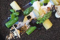 """Asperge-poireaux-vinaigrette truffee-noix-nousettes 2. JPGJean-François Rouquette作品的另一個特色是:極少醬汁,對於盤飾的設計,色彩的鮮麗是經過精心的構思。他把醬汁轉換成一種近乎調味料的東西,即很少的量造成很大的效果,像醬油,像醋,像胡椒。所以他的醬汁向來濃郁精粹,有一種奇特的強烈的力道,無論在味道或是視覺上都是。 """"普羅旺斯綠蘆筍/蒜苗佐松露醋汁,酥脆胡桃榛果""""。Premières asperges vertes de Provence, poireaux vinaigrette truffèe, croustillante aux noix et noisettes就是一道這樣的作品。三月初春,法國普羅旺斯的綠蘆筍和蒜苗剛冒出嫩苗,最是清雅鮮甜。黑色頁岩的盤底上用鮮奶酪畫出底線當盤飾,蒜苗蘆筍水煮,只取頭部鮮嫩處切成指段,交叉十字放置,中間鑲以墨色的黑松露片,最後盤子兩端灑上烤過酥脆的胡桃榛果碎塊。…"""
