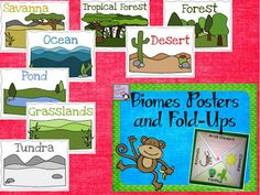 Biomes, Biomes, Biomes. Cootie catchers with different biomes. Lift the flaps and find animals, vegetation, and climate of that biome.
