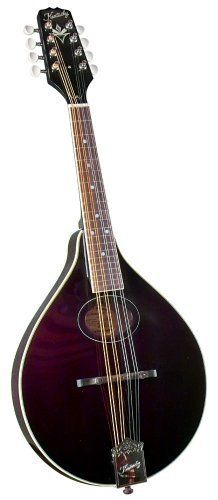 Kentucky Artist A-Model Mandolin Model KM-174 in Burgundy by Kentucky. $355.96. Every Kentucky mandolin is meticulously hand-crafted from the finest materials to produce the best possible instrument for players of every level.  We have upgraded the 100 series throughout and added new color options for every taste.