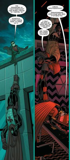 Grayson 12. Damian Wayne. Robin. Jason Todd. Red Hood. Tim Drake. Batgirl. Barbara Gordon. Batfamily.