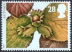 The Four Seasons. Autumn 28p Stamp (1993) Hazel
