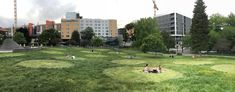After weeks of not mowing, the grass at Cal Anderson Park is now long enough for Distancing Circles. Seattle Neighborhoods, Circles, Grass, The Neighbourhood, Dolores Park, Travel, The Neighborhood, Viajes, Grasses